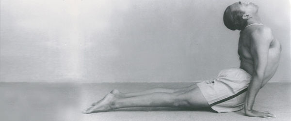 Iyengar and muscular intellience, Goodale Architecture Planning