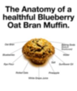 Anatomy-of-BOB-Eat.jpg