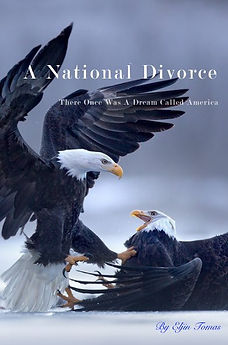 A National Divorce Cover.jpeg