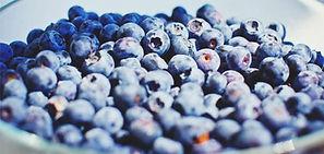 BlueberryBackgroundOpt.jpg