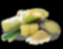 sugarcane-frozen-USA.png
