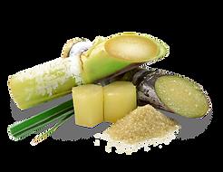 sugar cane glycolic acid