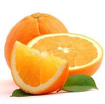 orange-studio-isolated-on-white-backgrou