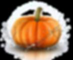 FireShot Screen Capture #5600 - 'Pumpkin