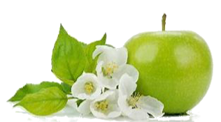 gree flower apple.png