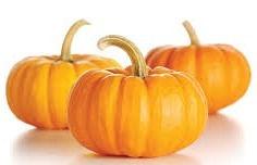 pumpkin 2_edited.jpg