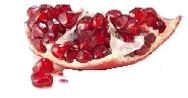 Pome fruit trans.png