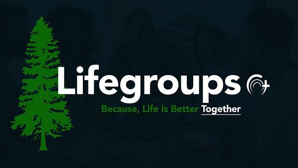 Main Life-Group V2.png