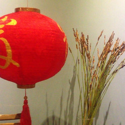 🏮🏮🏮Golden calligraphy on the lantern