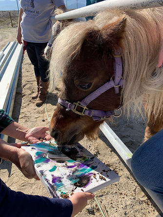 momma Maddy doing a horse painting for c