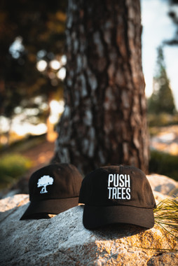 Push Trees : OC Photoshoot
