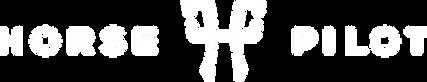 Logo HP 2016 Blanc.png