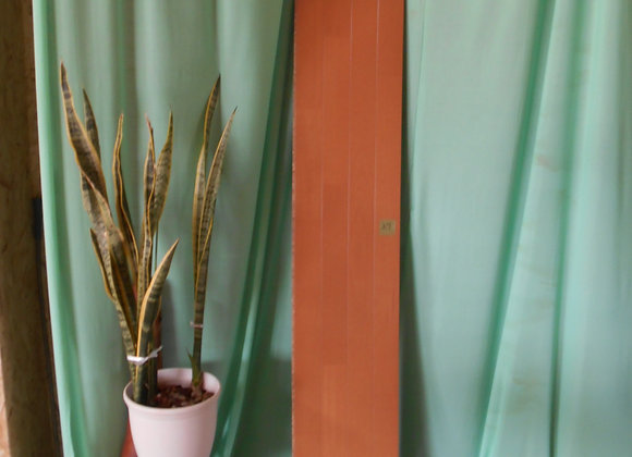 木目柄の化粧床材 27
