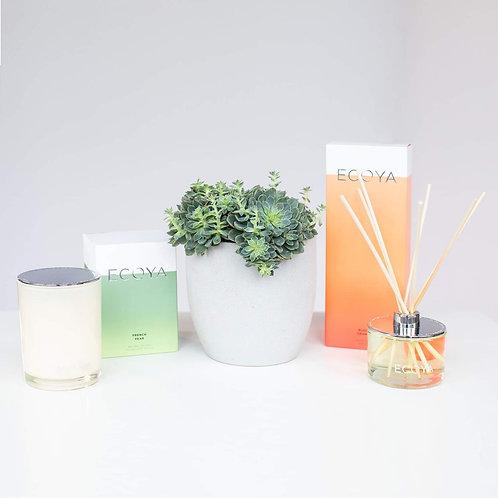 Botanical Luxury Gift