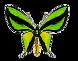 la lepidoteca logo copia.png
