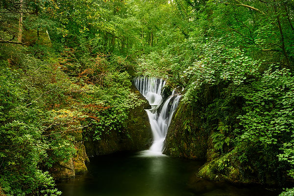 DiFi Waterfall.jpg
