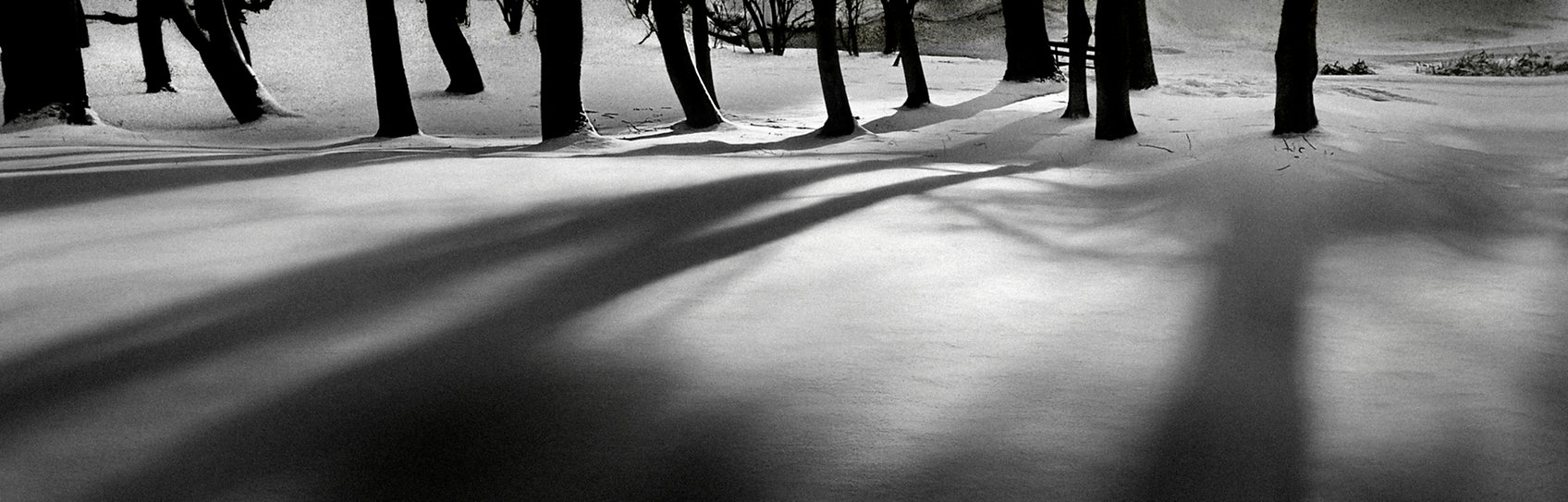 Light-and-Shade.jpg