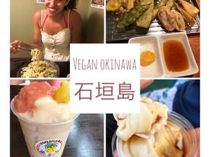 Vegan Island Hopping in Okinawa - Ishigaki