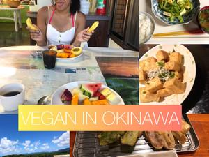Vegan Island Hopping in Okinawa - Taketomi & Iriomote