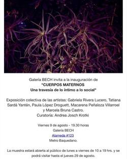 Exposición Cuerpo maternos