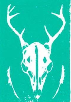 Skull bri Fischella.png