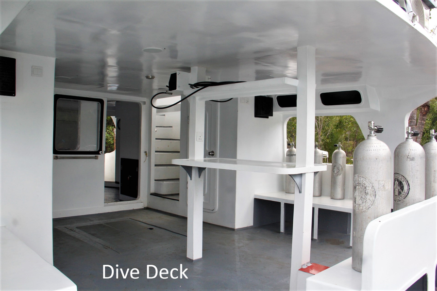 Gattino Dive Deck 1 edit text.png