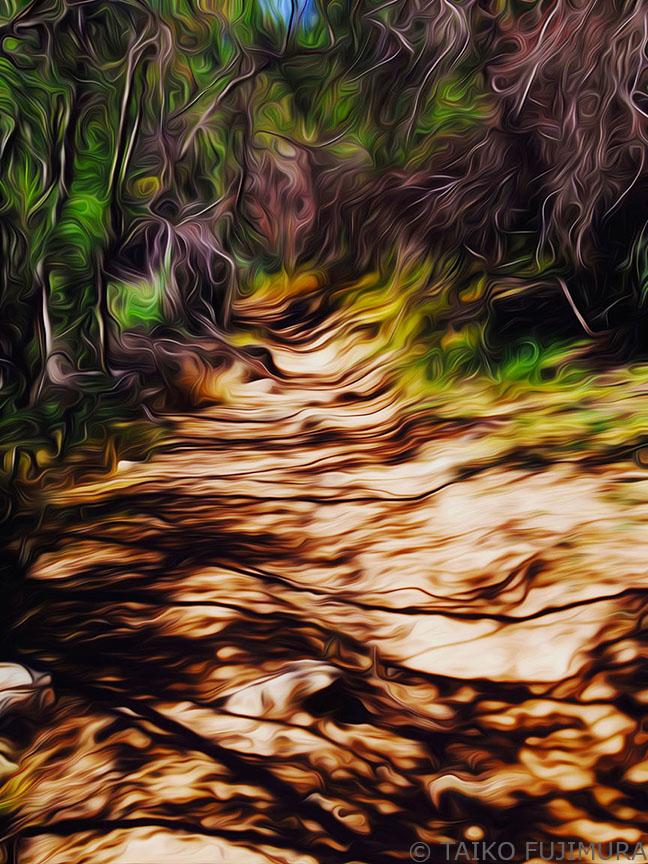 Ojai Landscape 22