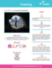 Framing_Lesson-Handout.jpg