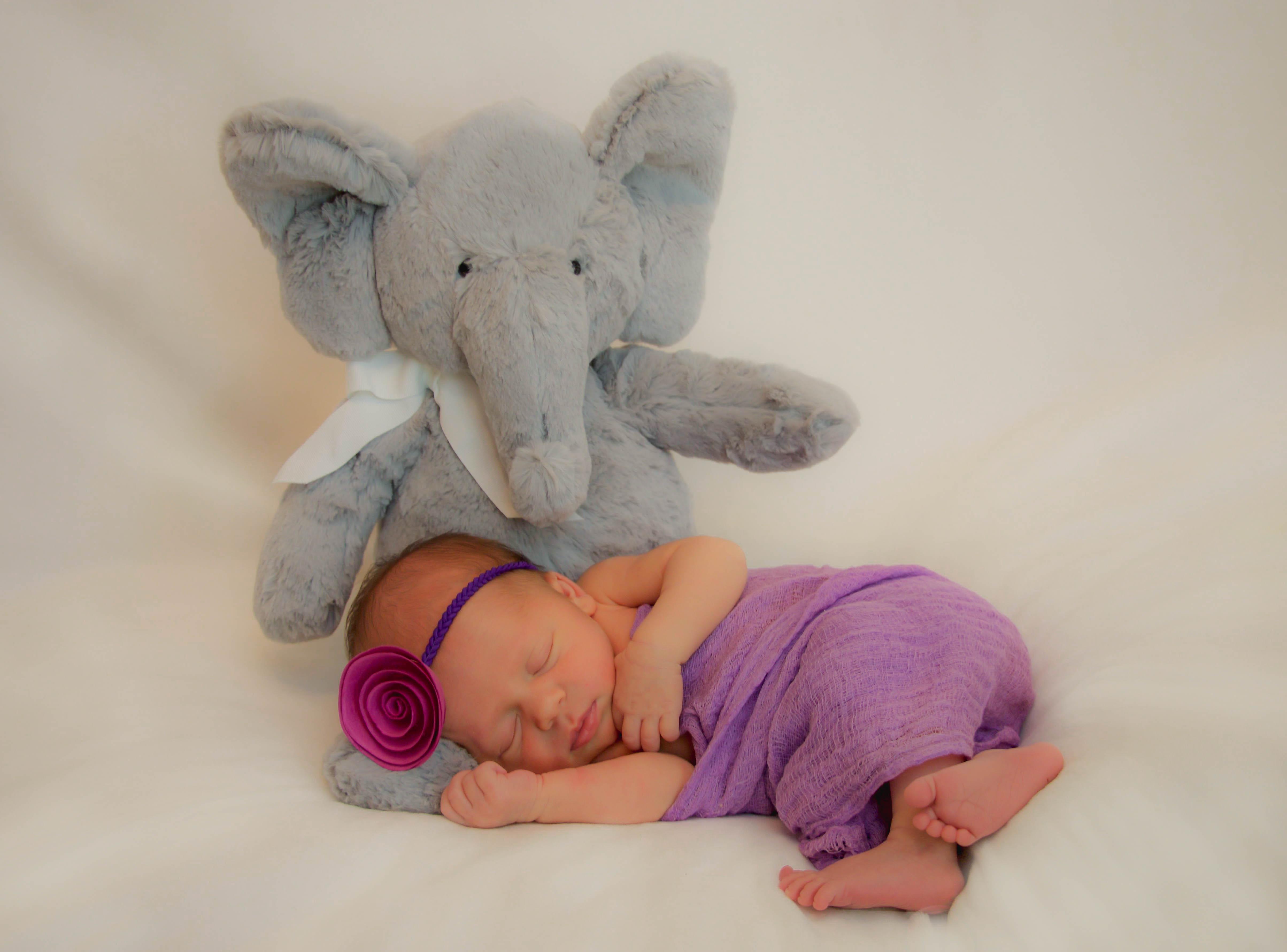Final elephant