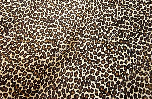 leopard-background-X1Y9E9~2 (1).jpg
