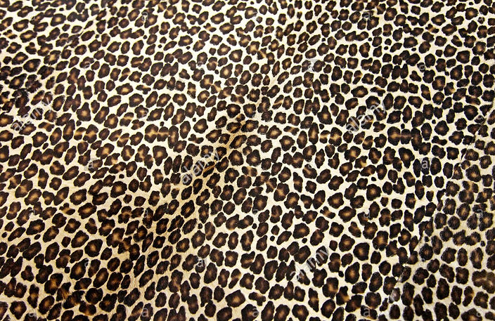 leopard-background-X1Y9E9~2 (1).jpg