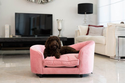 pink luxury dog bed