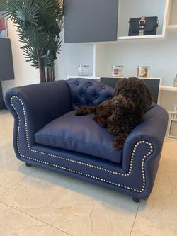 Luxury-blue-leather-dog-bed