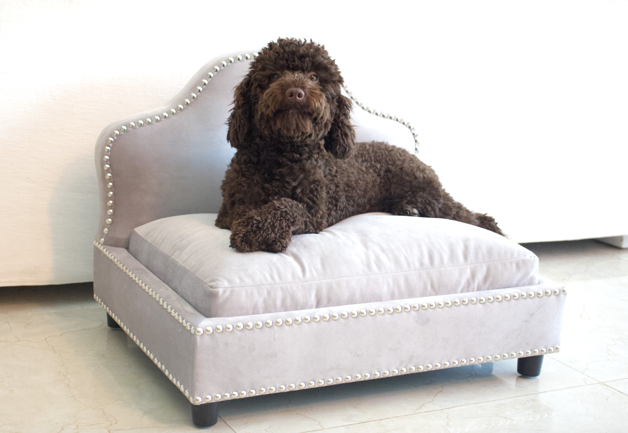 Luxury dog bed in silver velvet