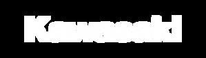 jet-ski-logo_kawasaki.png