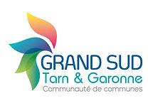 Logo GSTG-Print_Quadri grande taille.jpg