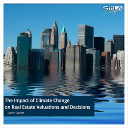 The Impact of Climate Change on Real Estate Valuations and Decisions