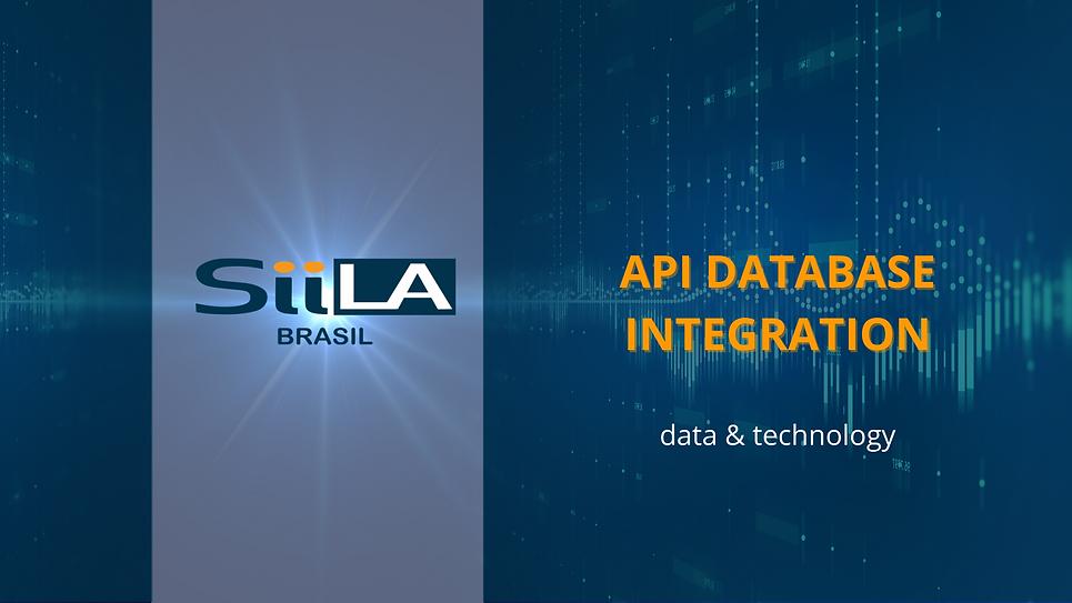 API DATABASE INTEGRATION-LARGE.png