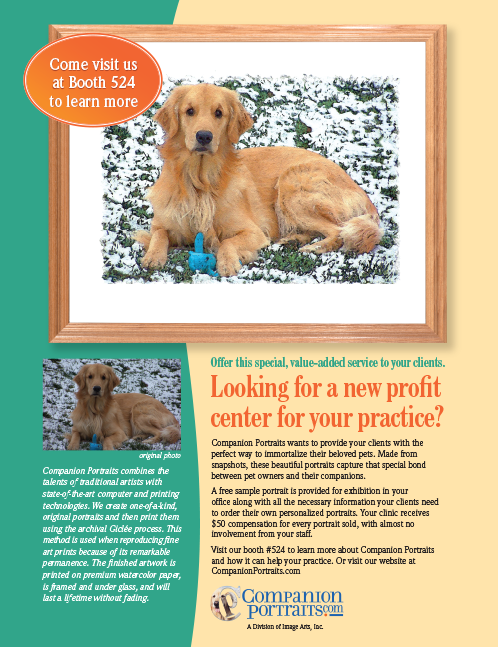 Pet Pictures Advertising