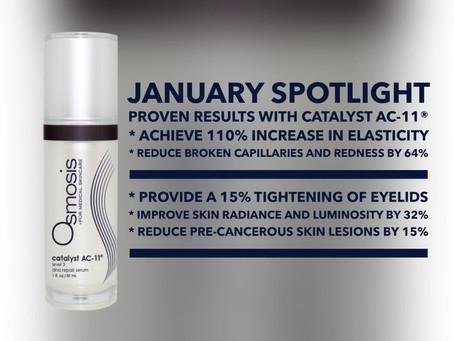 January Spotlight - Catalyst AC-11