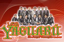 YAGUARU
