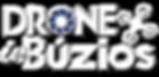Logo_Drone_in_Búzios_com_vetor_drone.png