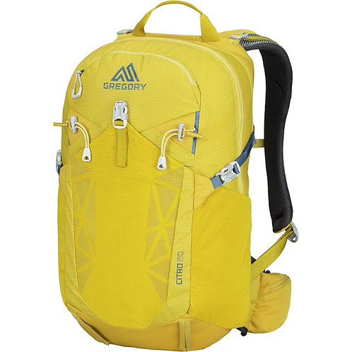 Gregory - Citro 20 Backpack