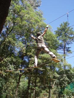 Pedaços de Aventura - Treetop