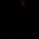 LogoPCR_CerezasColor_transparente.png