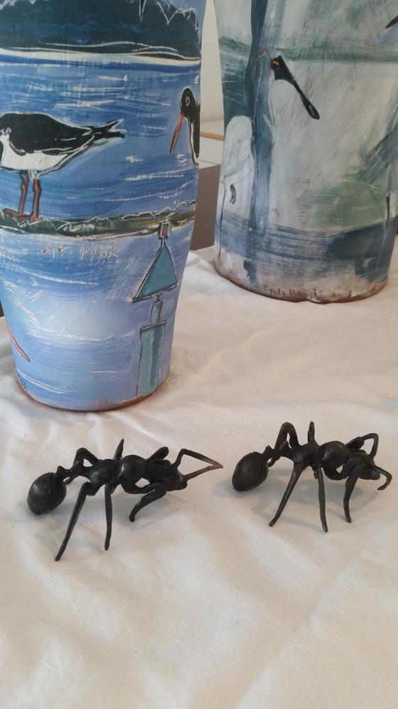 Atom Ants