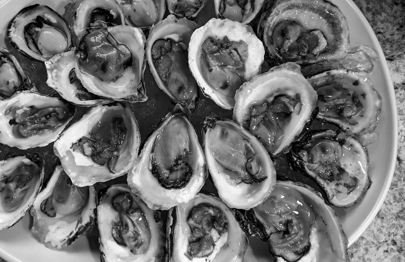 Pile of Freshly Shucked Oysters