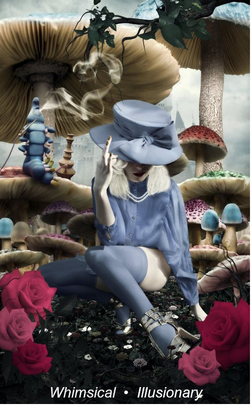 Wonderland Concept Image
