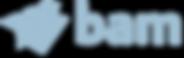 Royal_BAM_Group_logo2.png