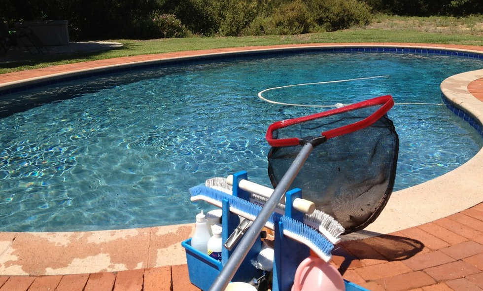 Pool Repair Consultation
